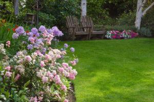 Your First Spring Garden